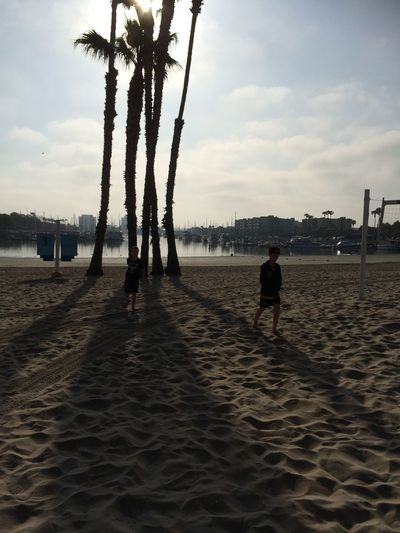 Beach Beauty In Nature Lifestyles Outdoors Palm Tree Real People Scenics Sea Silhouette Sky Water
