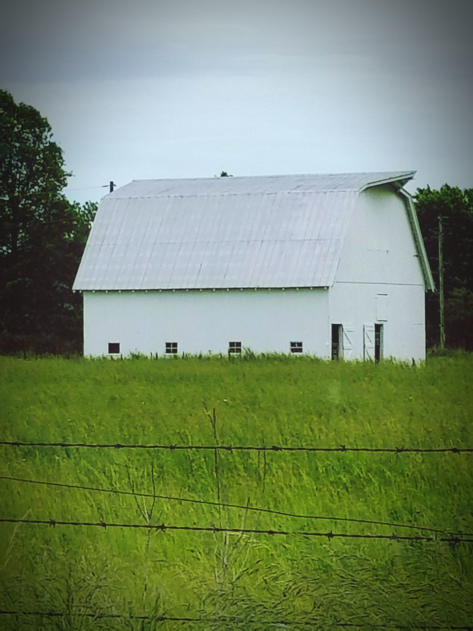 built structure, architecture, field, farm, building exterior, no people, barn, green color, agriculture, day, growth, grass, outdoors, tree, landscape, nature, rural scene, agricultural building, corrugated iron, sky