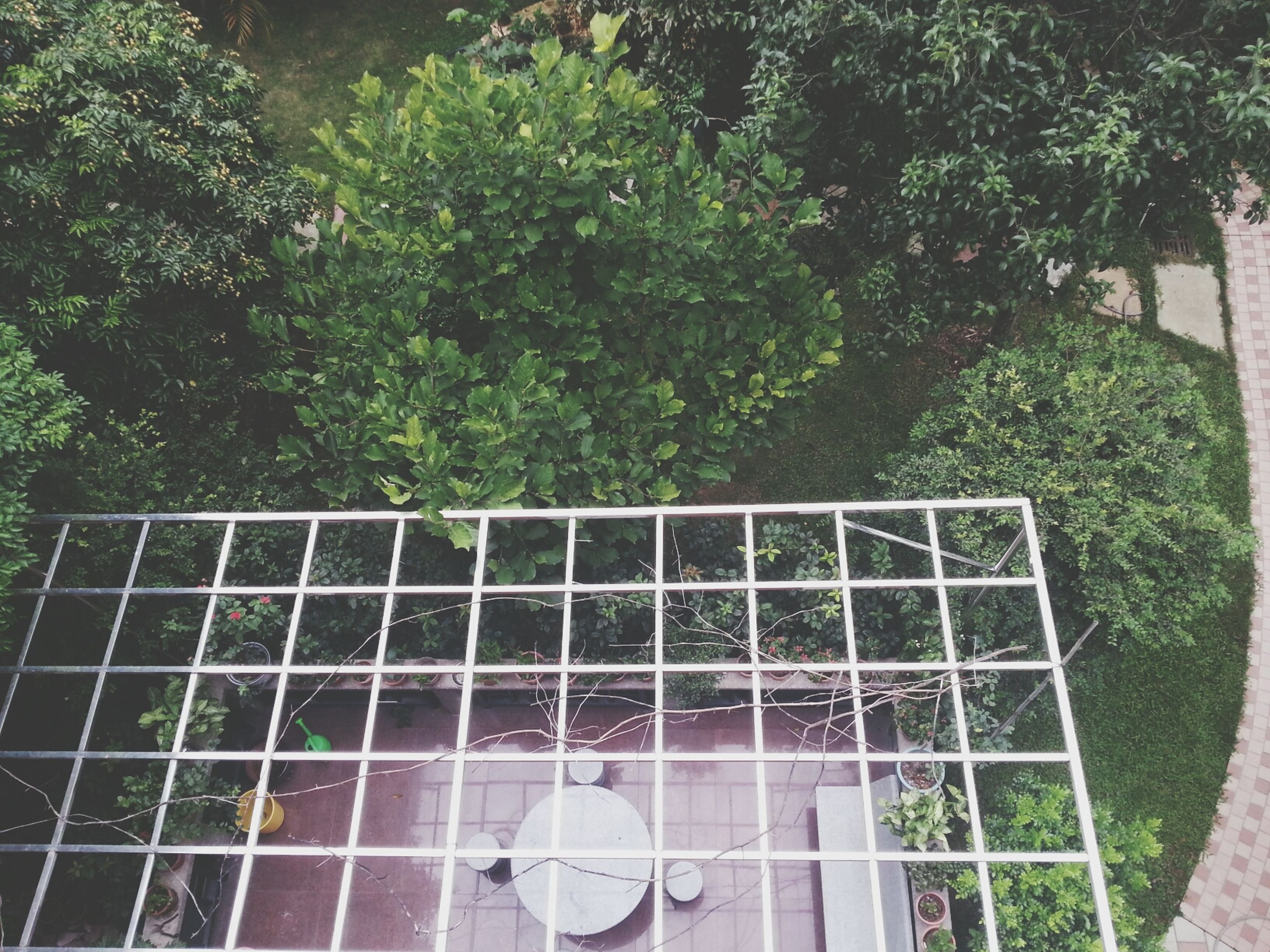 high angle view, green color, tree, day, metal, outdoors, fence, front or back yard, childhood, plant, leisure activity, lifestyles, built structure, railing, park - man made space, metal grate, chair, reflection