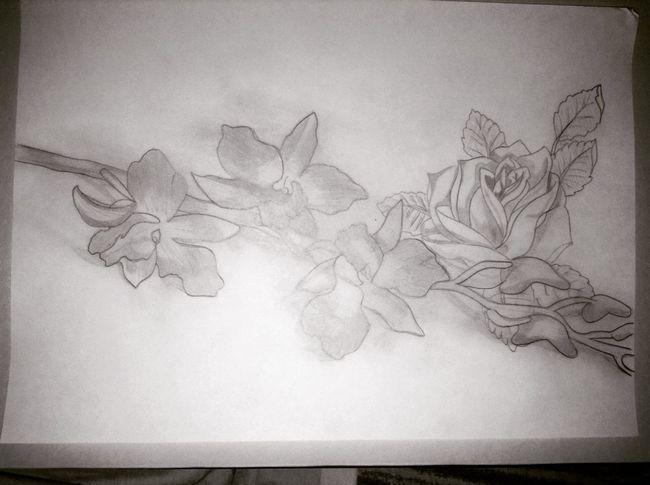 Flowers Fleurs Drawing Dessin Composition