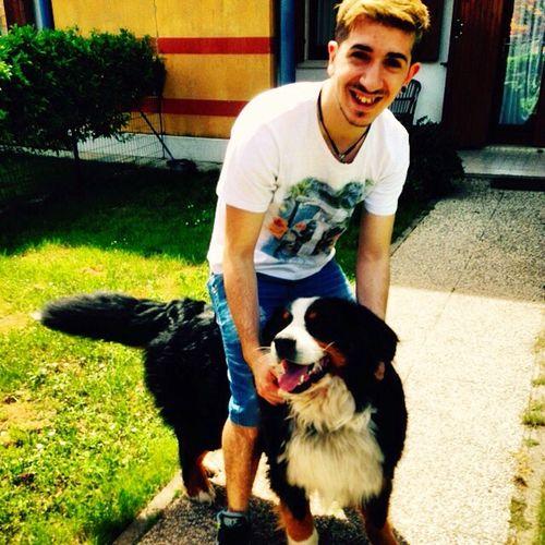 Il cane è bellissimo mio amico da Verona