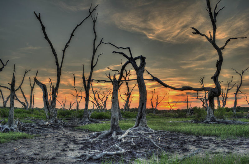 life after death All Seeing Eye4photography Sunset Colors Eye Em Best Shots