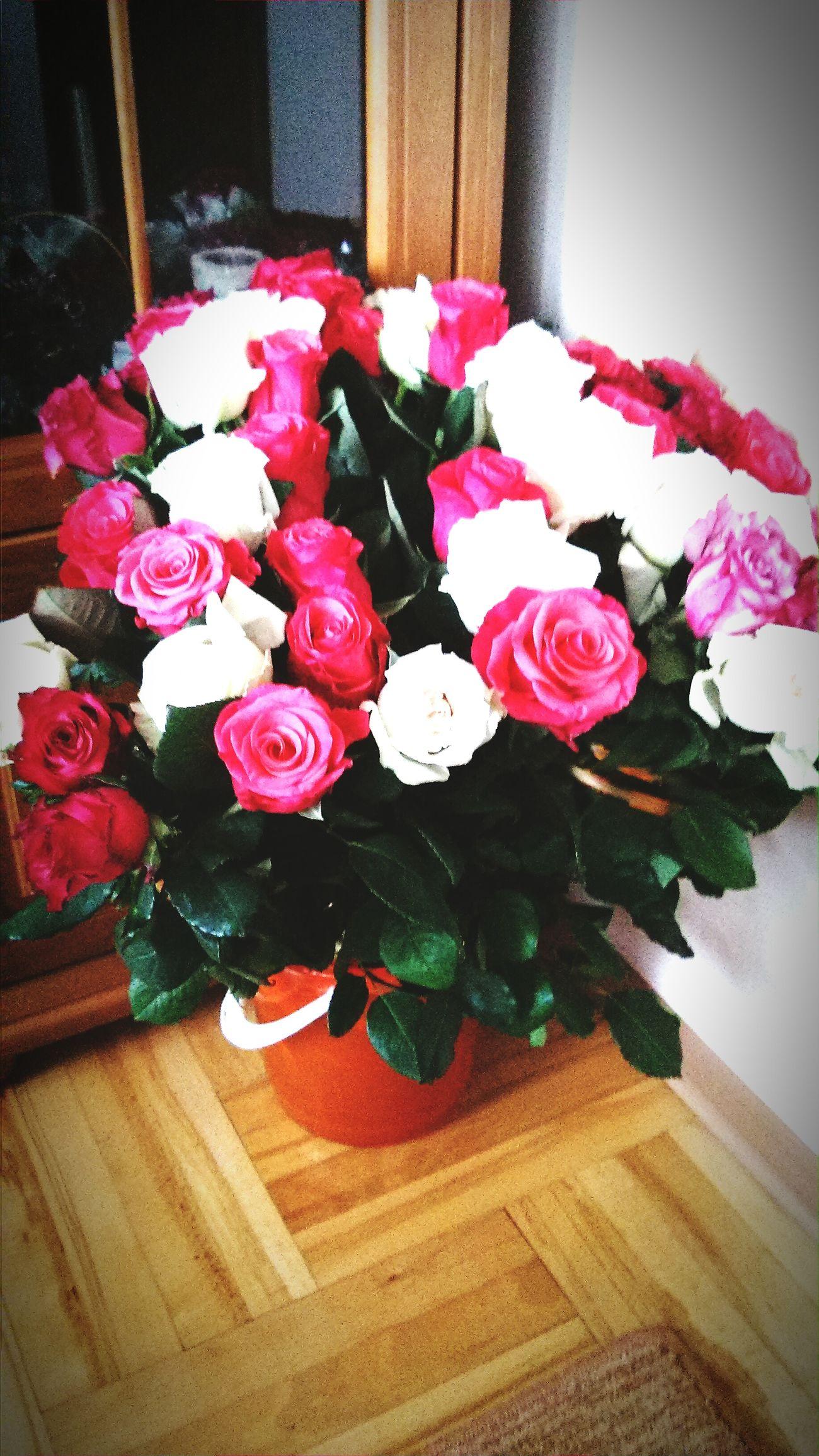 Roses🌹 Flowers Rose♥ 60rose NiceDay❤️❤️ ❤️💜💙💚💛 Springtime