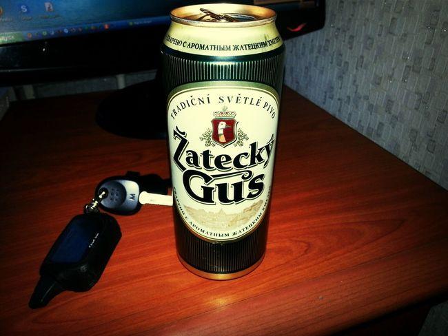 ★★★★★ Pivo Piva