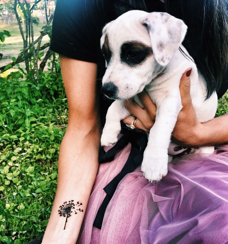 Dog Pets Human Body Part One Animal Human Leg Domestic Animals Mammal One Person Sitting Human Hand Real People Leisure Activity Men Outdoors Lifestyles Day Women Low Section Close-up Adult Henna Puppy❤ Henna Tattoo MehndiDesign