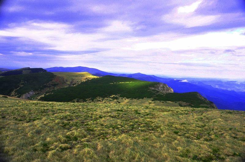 Mountain View Beautiful Nature Landscape_Collection Naturephotography Pinus Mugo