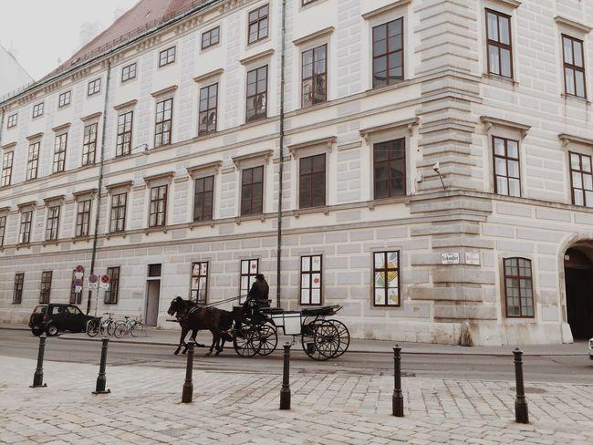 Old Vienna Vienna Wien