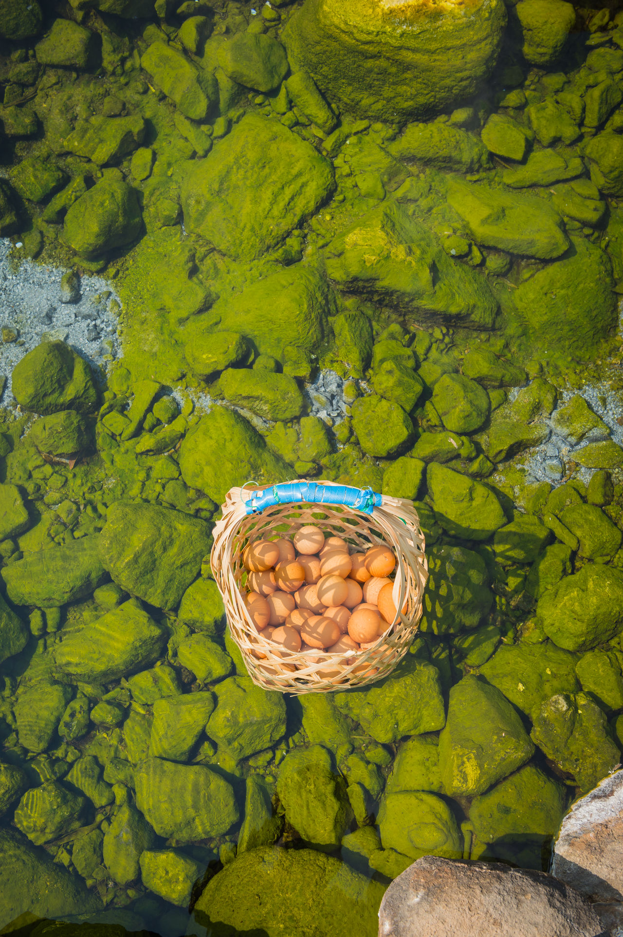 Boil egg in hot springs Basket Beauty In Nature Day Egg Food Food And Drink Green Green Color Ground Group Of Objects Healthy Eating Healthy Food Hot Spring Natural Nature No People Object Onsen Onsen Egg Outdoors Transparent Travel Water