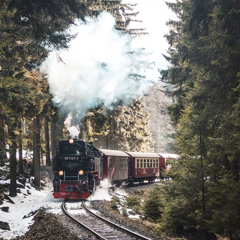 Rolling into the spring. Transportation Tree Smoke - Physical Structure Mode Of Transport Real People Land Vehicle Outdoors Rail Transportation Day Public Transportation Steam Train Sky Locomotive