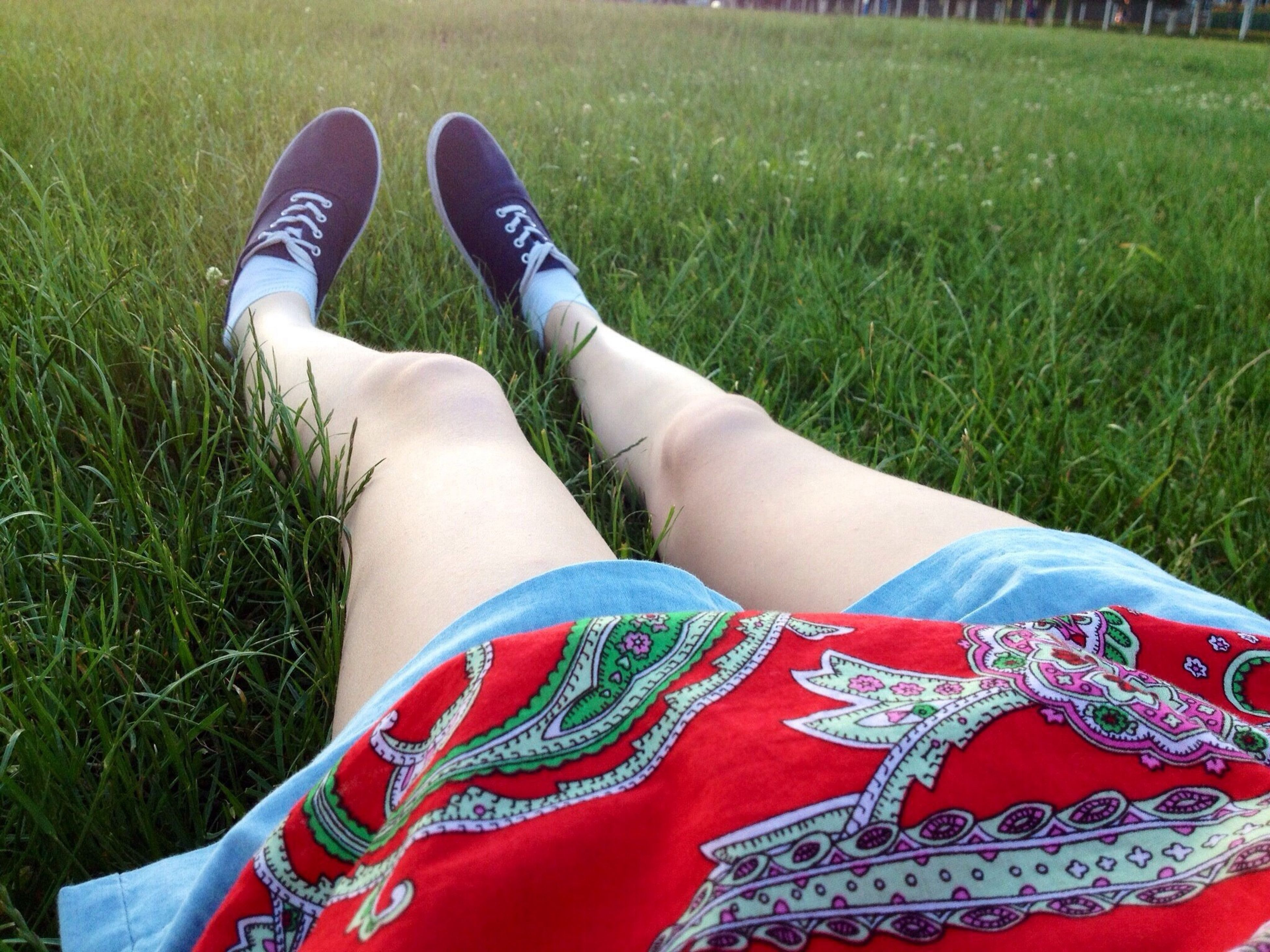 low section, person, lifestyles, grass, shoe, leisure activity, high angle view, personal perspective, standing, human foot, jeans, footwear, field, casual clothing, green color, part of