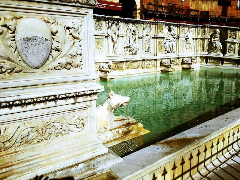 Architecture Sculpture Art City Beautiful History Culture Piazza Del Campo Fonte Gaia Siena Italy Tuscany Siena Reflection Water Built Structure Day Outdoors Architecture No People Building Exterior Vacation Destination Vacation EyeEmNewHere