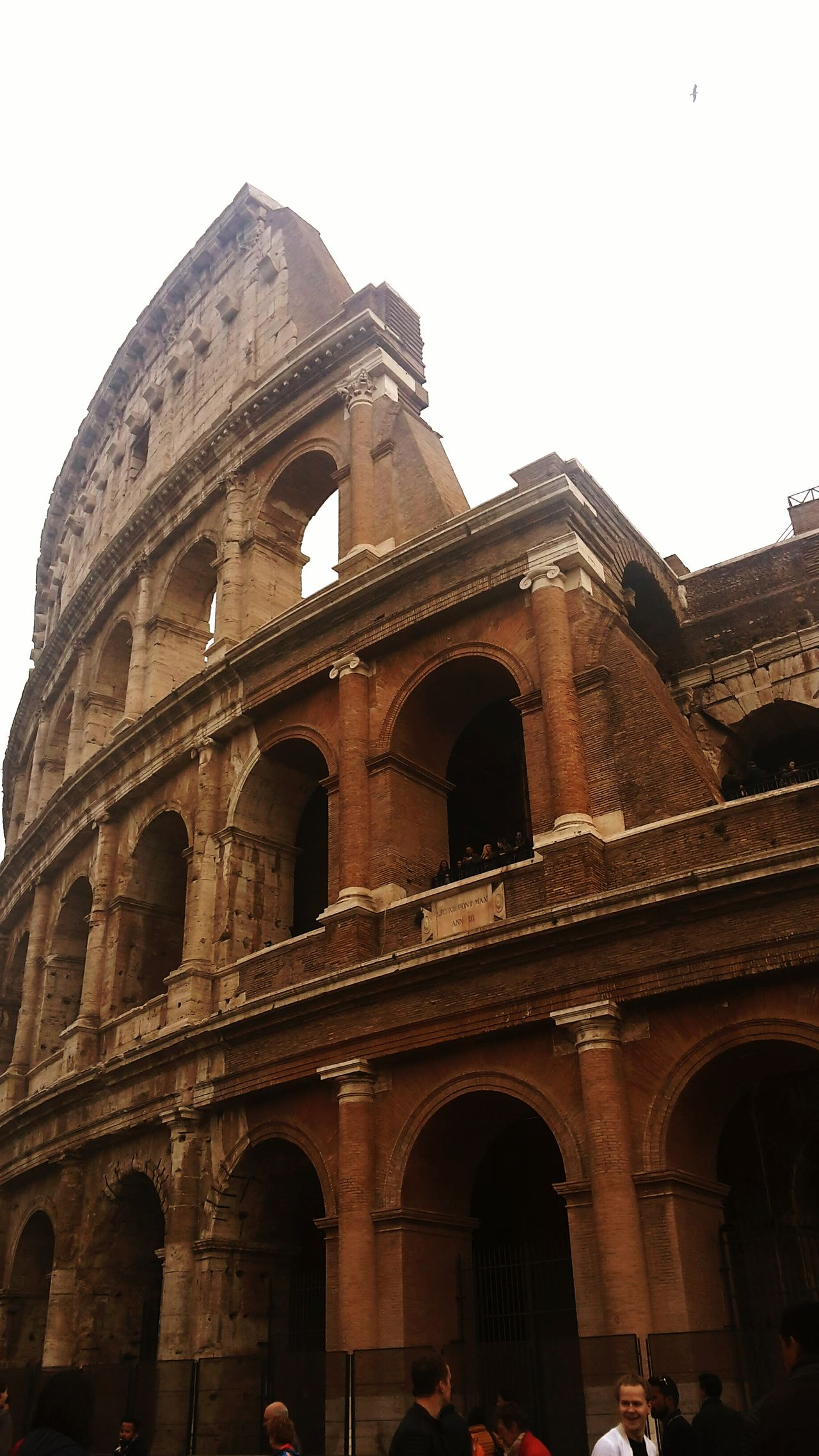 Colosseo - Roma Low Angle View Travel History City Travel Destinations Sky Architecture Built Structure Tourism Outdoors No People Day Roma Colosseo Weekend Love Of Art Art Roman Architecture Roman Empire Romantic Place History Architecture Saturday Turist Beautiful Place Nature