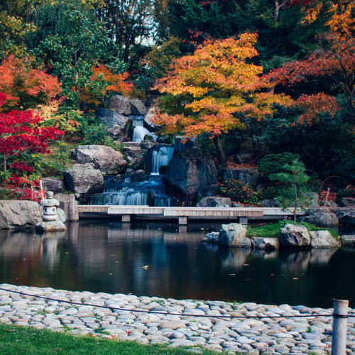 Architecture Autumn Beauty In Nature Building Exterior Built Structure Day Flower Garden Kyoto London Leaf Nature No People Outdoors Reflection Rock - Object Scenics Tranquility Tree Water Waterfall Long Exposure Postcode Postcards