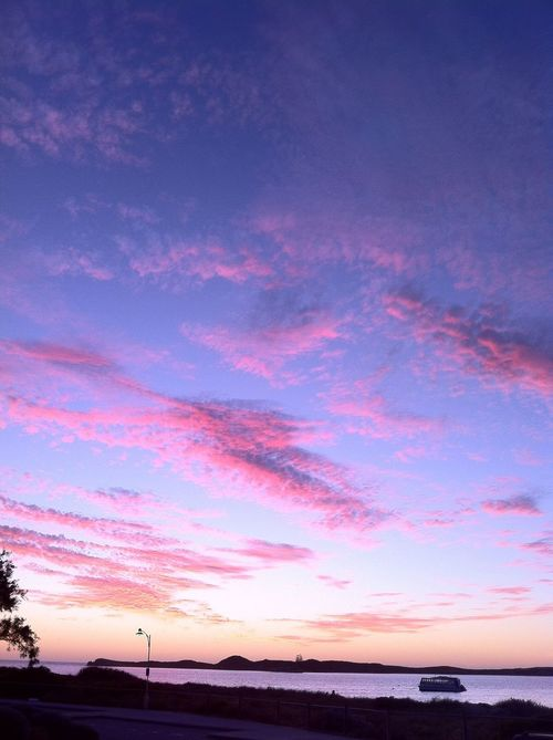 Sunset Silhouettes Shoalwater WesternAustralia