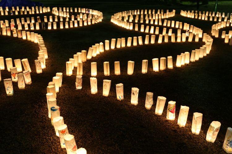 2015  Candle Light Candle Night Candle Night At Zojozi Event Illuminated Japan Lamp Light Night Tokyo キャンドルナイト 増上寺 Temple