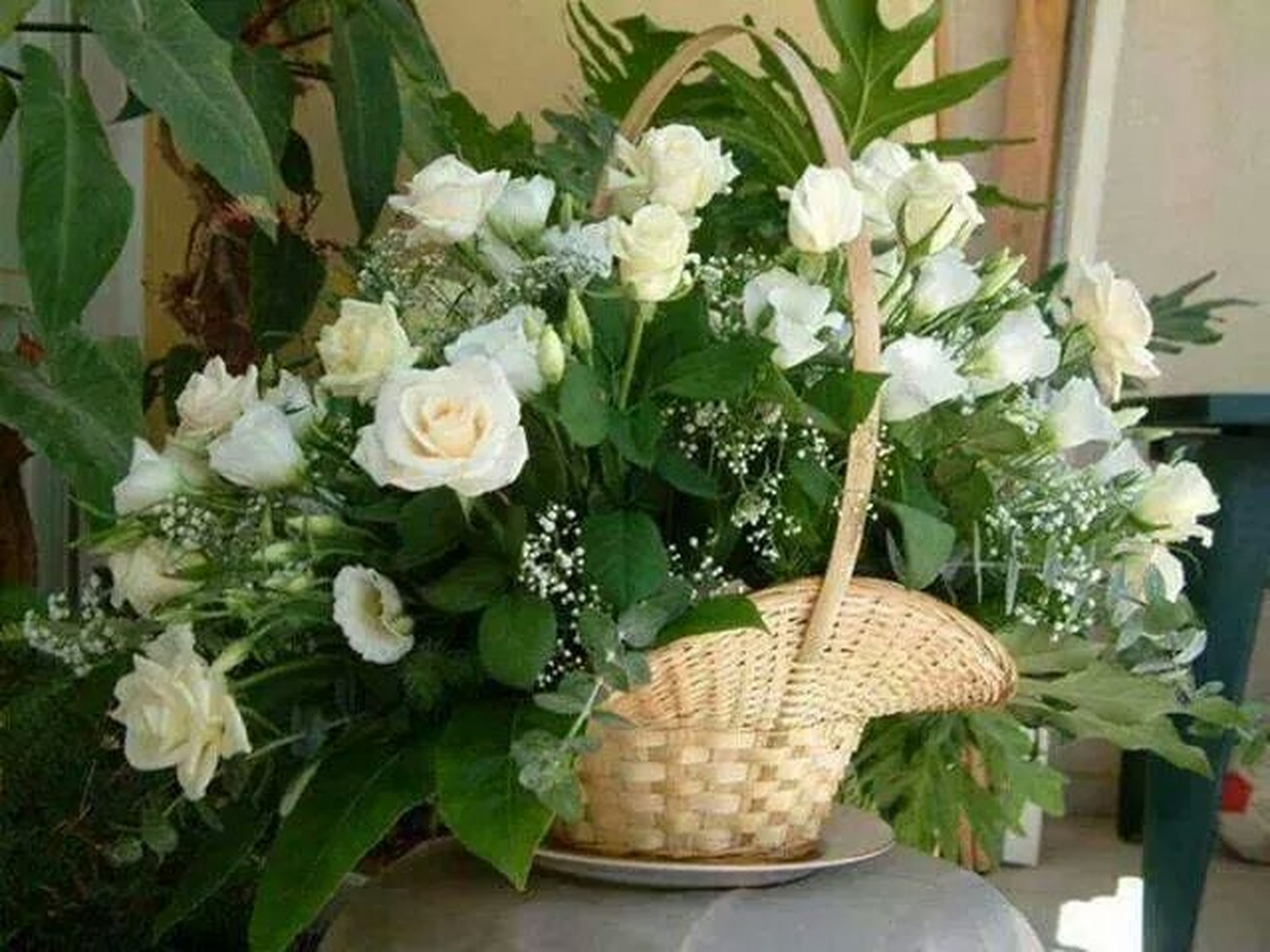 flower, freshness, fragility, petal, indoors, vase, white color, bouquet, bunch of flowers, plant, flower head, potted plant, growth, flower arrangement, beauty in nature, leaf, high angle view, nature, table, close-up