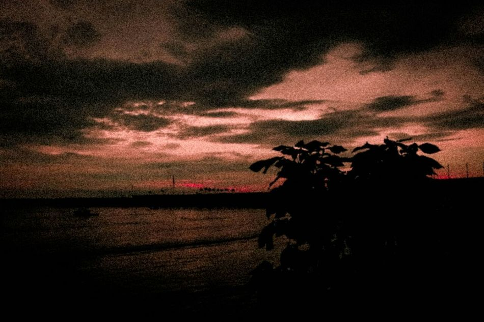 Admirar un espectacular atardecer Wonderful Grano Eos70d Relaxing Hi! Photograph Lifestyles Canon_photos Visitpanama Photography Taking Photos Photographer Eyemphotography Canonphotography Nature Life Panamá Hello World Pty Photo Blackandwhite Sunrise Sunset