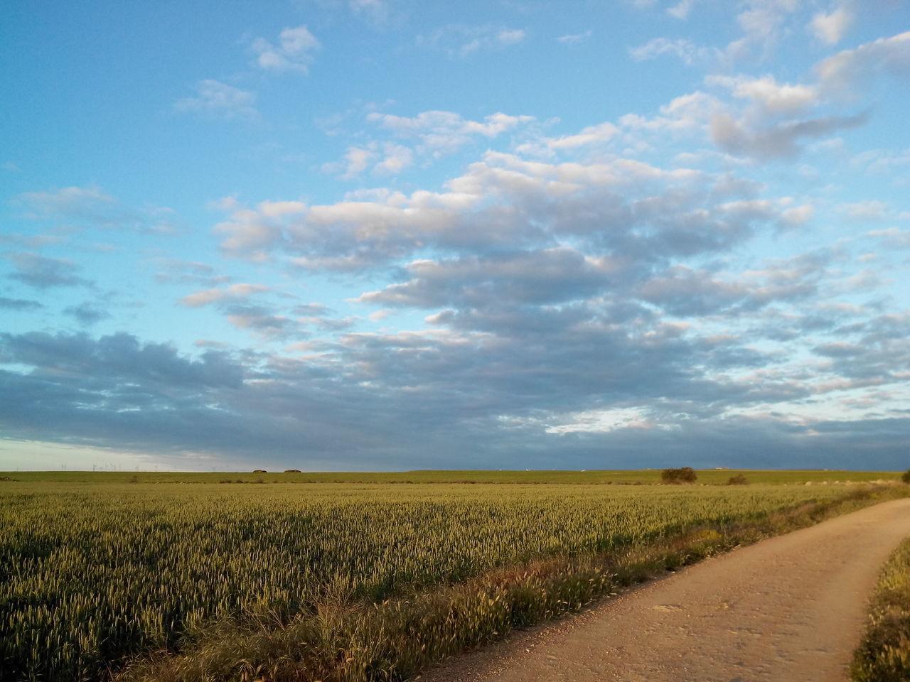 2014 Alleine Bewölkt Camino CaminodeSantiago Cloudy El Camino De Santiago Empty Früh Jakobsweg Leer Morgen Morning Road Straße Way Way Of Saint James Weg Zeitig