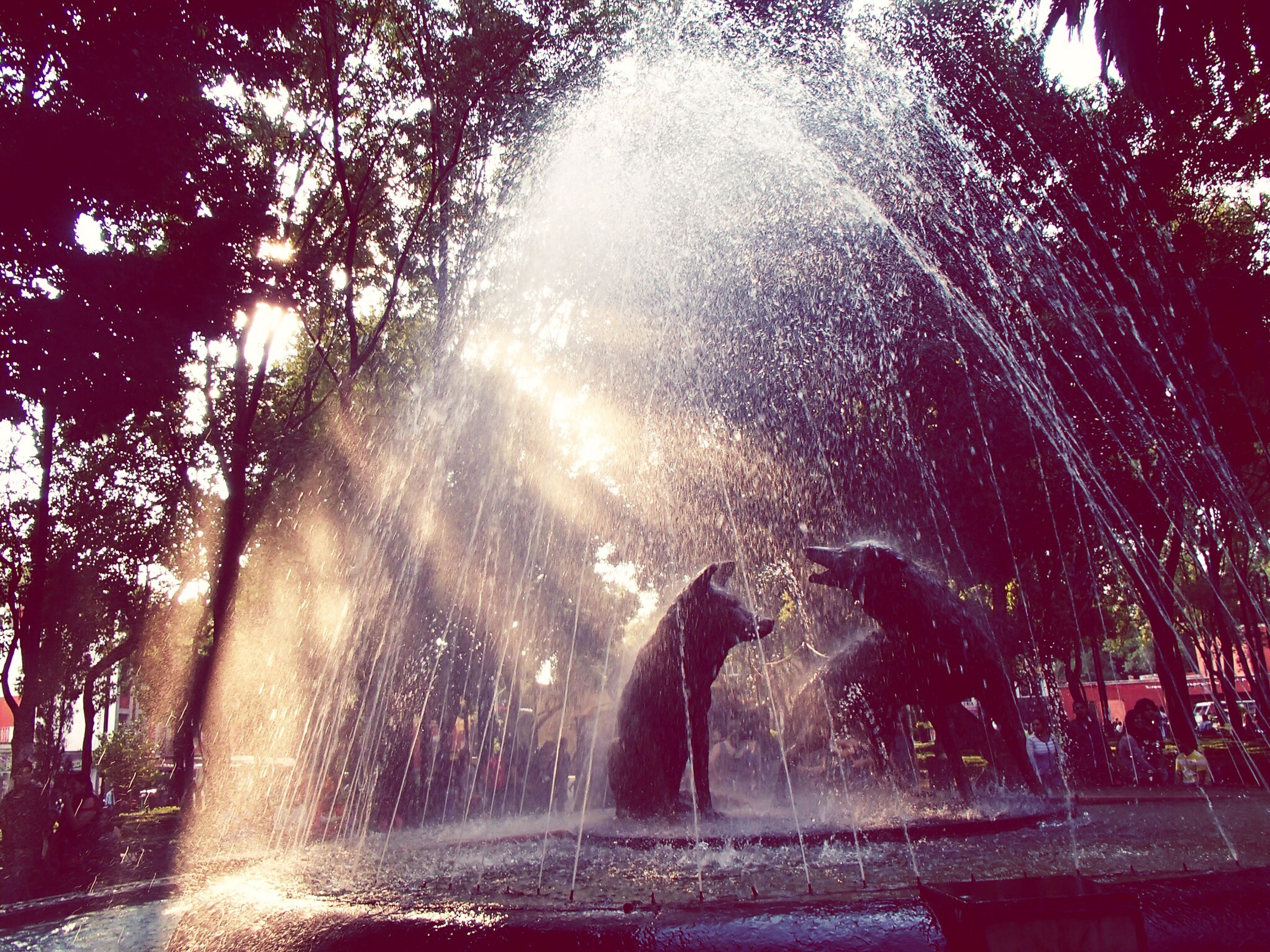 fountain, motion, tree, spraying, water, long exposure, splashing, blurred motion, low angle view, night, park - man made space, illuminated, lens flare, outdoors, flowing water, built structure, falling, nature, sunlight, clear sky