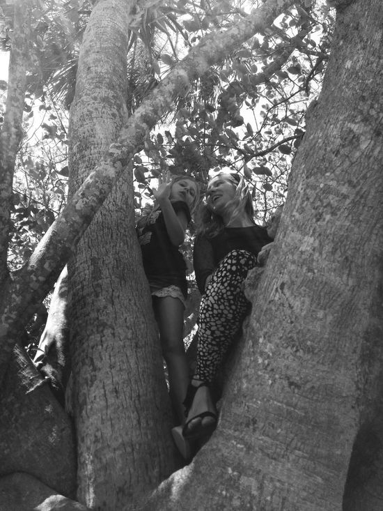 Mom And Daughter In A Tree Climbing Trees Having Fun Smiles Togetherness