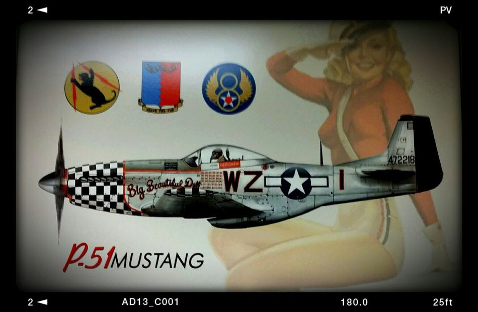 Taking Photos Plane Aviationphotography Captain Pictures Flying Signs Signstalkers Flying High FlyGuy P51 Mustang