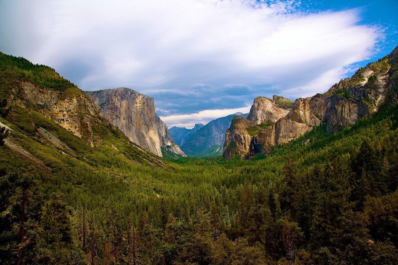 Yosemite National Park Yosemite Valley Yosemite EyeEm Best Shots EyeEm Nature Lover Eye4photography  EyeEm Gallery EyeEm Best Shots - Nature EyeEm Masterclass Scenics Landscape Cloud - Sky Outdoors Wilderness Forest Tranquil Scene Eyeem Travel EyeEm Travel Photography EyeEmBestPics