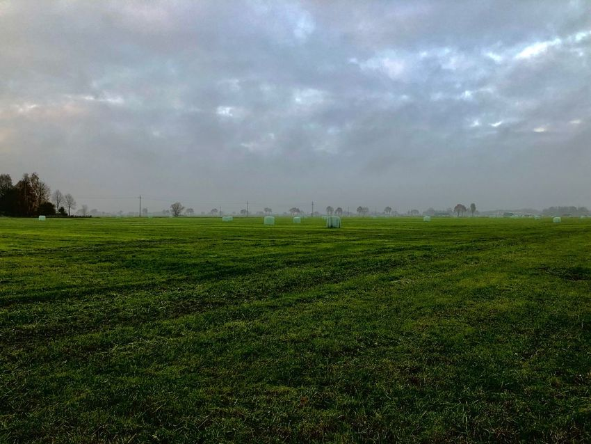 Hay bales Field Grass Sky Landscape Nature Beauty In Nature Cloud - Sky Green Color No People Agriculture Outdoors Rural Scene Scenics
