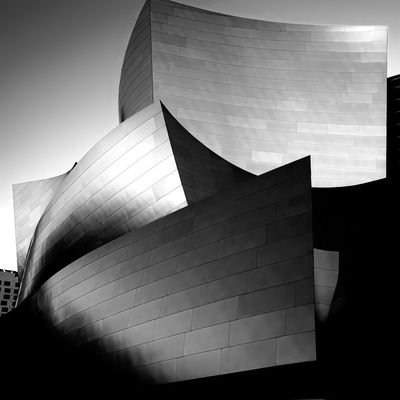 The Architect - 2016 EyeEm Awards Walt Disney Concert Hall by Frank Gehry in Downtown Los Angeles . Architecture Photography Fuji Xpro1 Blackandwhite Photography