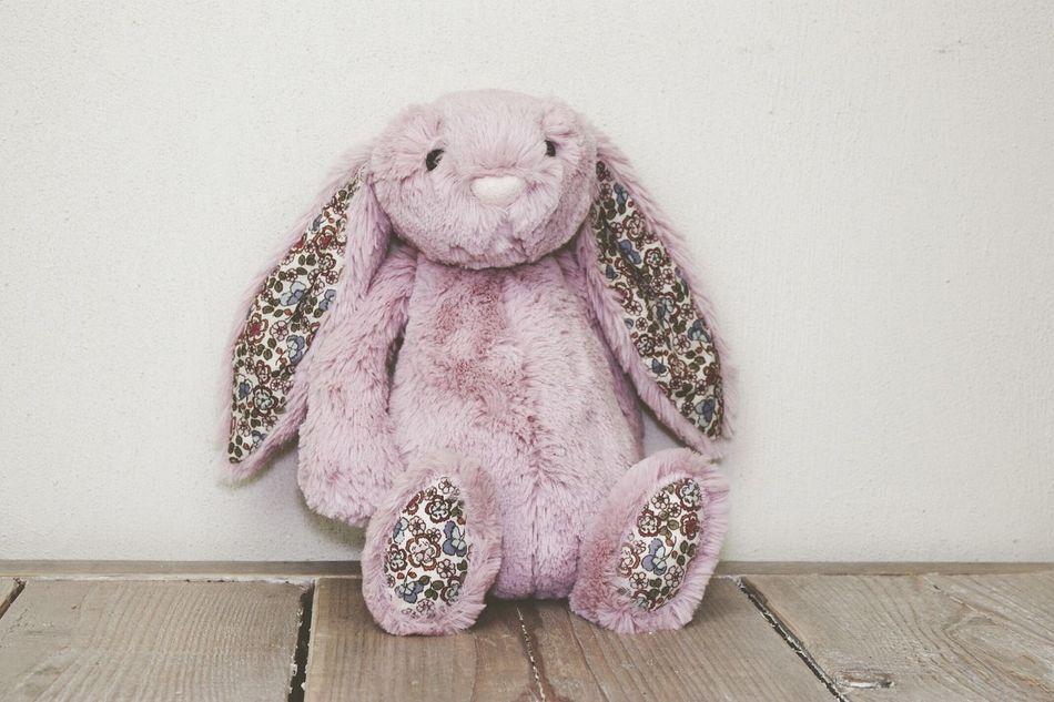 Beautiful stock photos of easter bunny, Animal Representation, Childhood, Close-Up, Flooring
