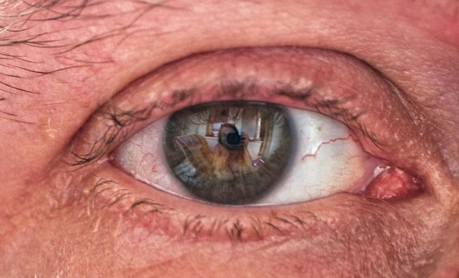 Augen Eye I See You Eyes Transcience EyeEm Best Shots Macro_collection Macro I In Your Eyes Open Edit