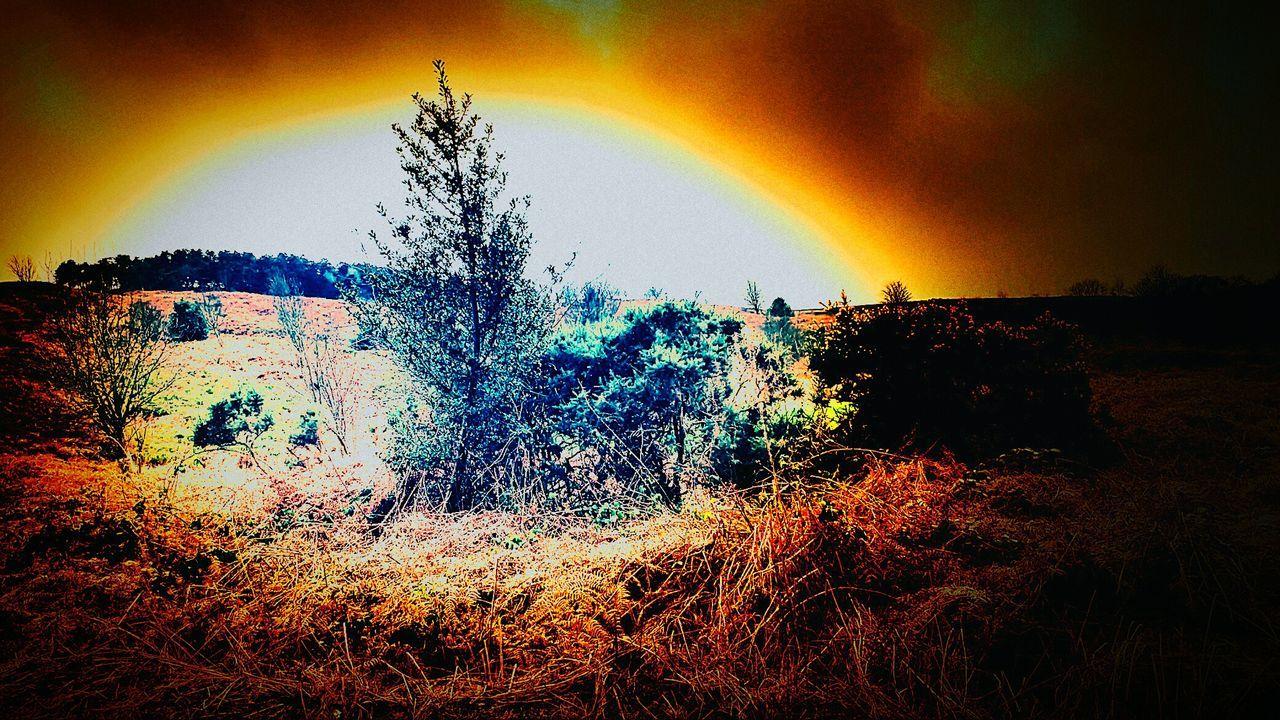 White Wells Ilkley Moor IlkleyMoor Ilkley Nature No People Beauty In Nature Outdoors Illuminated Sky Sunset Ilkley Tarn