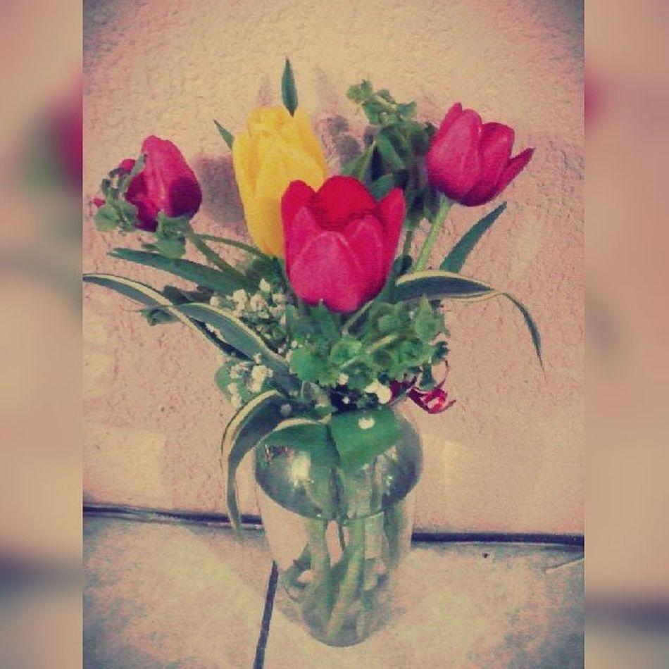 Flores ♥ Ayer Tarde  Hermosas Gracias Chaparro ♥ ♥ Tulipanes :3Happy Detalle Supermegahiperhermoso !