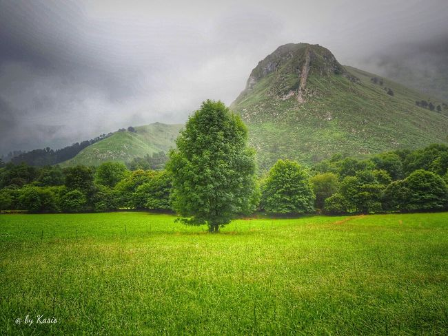 Mountain Scenics Tranquility Tree Landscape Beauty In Nature Tranquil Scene Non-urban Scene Nature Cloud - Sky Sky Outdoors Color Photography EyeEm Best Shots The Great Outdoors - 2016 EyeEm Awards Sky_collection Green Color