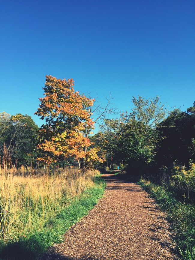 fall is here... Myfavoriteseason