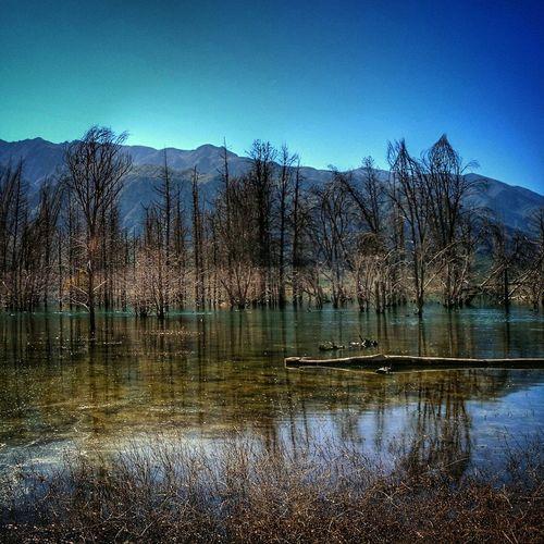 Otoño en Potrerillos Mountains Landscapes Mendoza Argentina Photojournalism Water Autumn Otoño 🍁