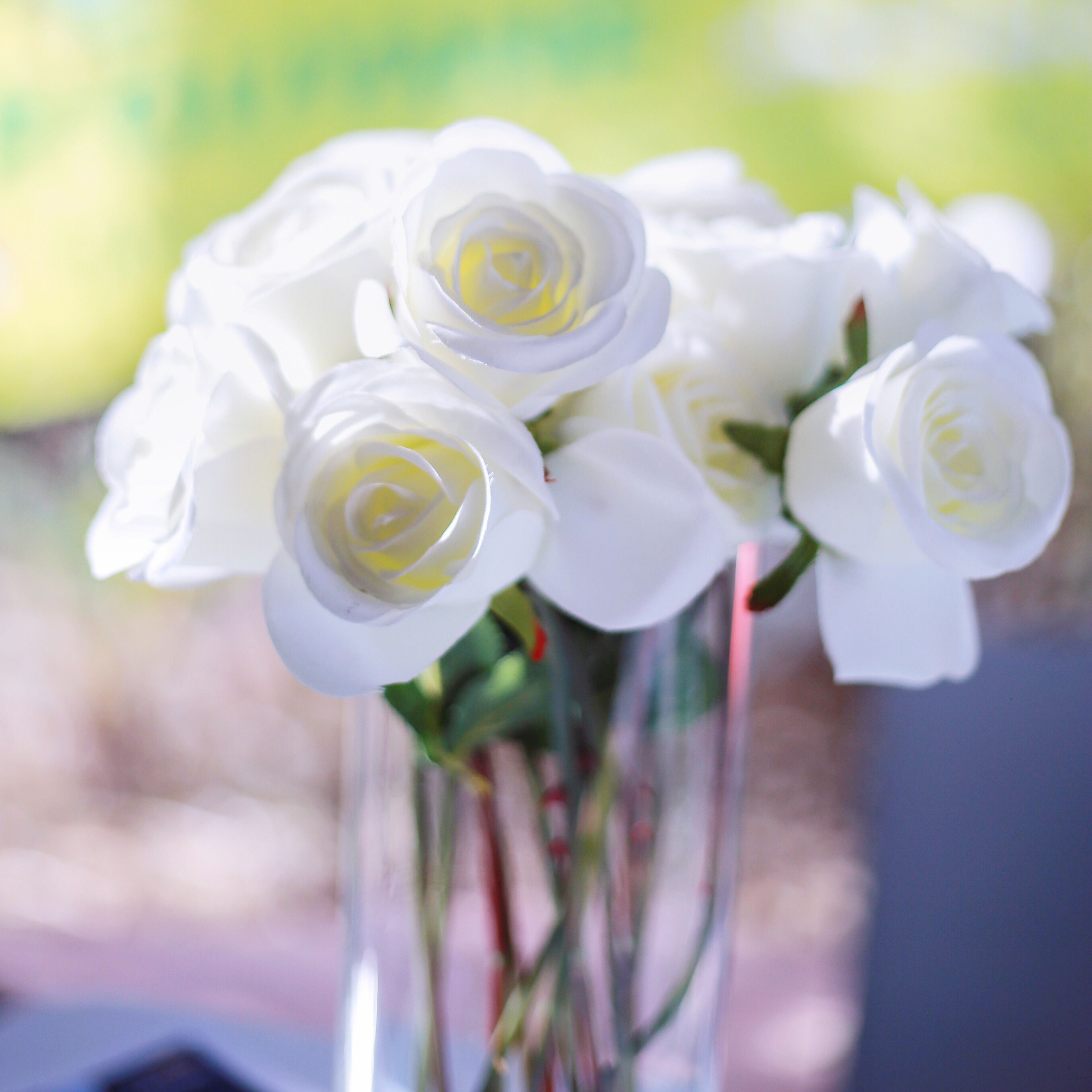 flower, petal, rose - flower, close-up, focus on foreground, fragility, nature, flower head, day, no people, growth, plant, indoors, freshness, beauty in nature, bouquet