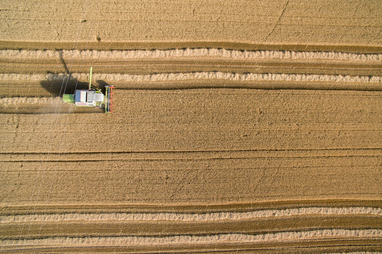 agriculture, farm, growth, field, rural scene, cereal plant, crop, high angle view, nature, outdoors, day, working, combine harvester, farmer, one person, plowed field, people