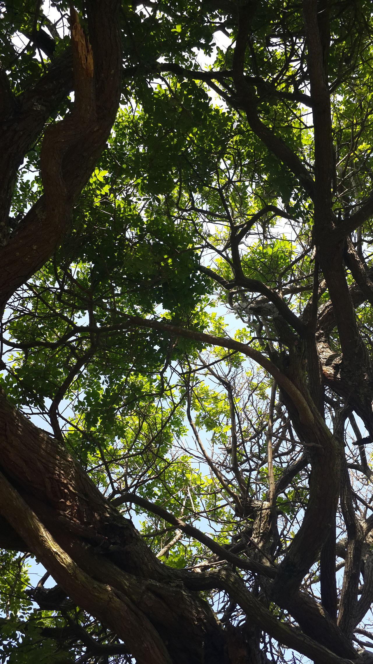 brett scott eyeem south africa relaxing hanging