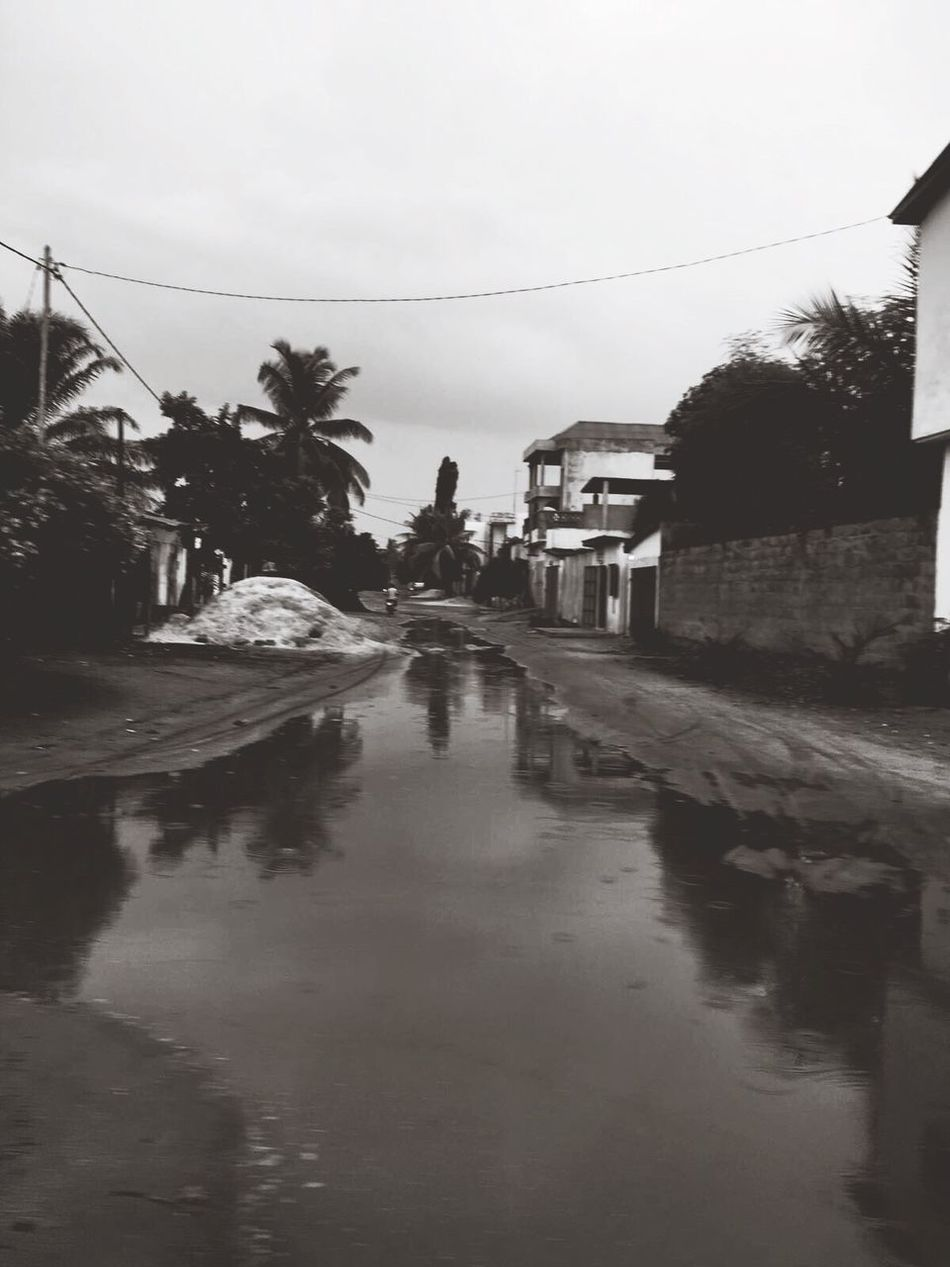 The City Light Tree Reflection Water Sky Built Structure Palm Tree Building Exterior Outdoors Wet Nature Architecture Day No People Togo Africa Nature Rain EyeEm Best Shots Blurry Front View Nature_collection EyeEm Nature Lover