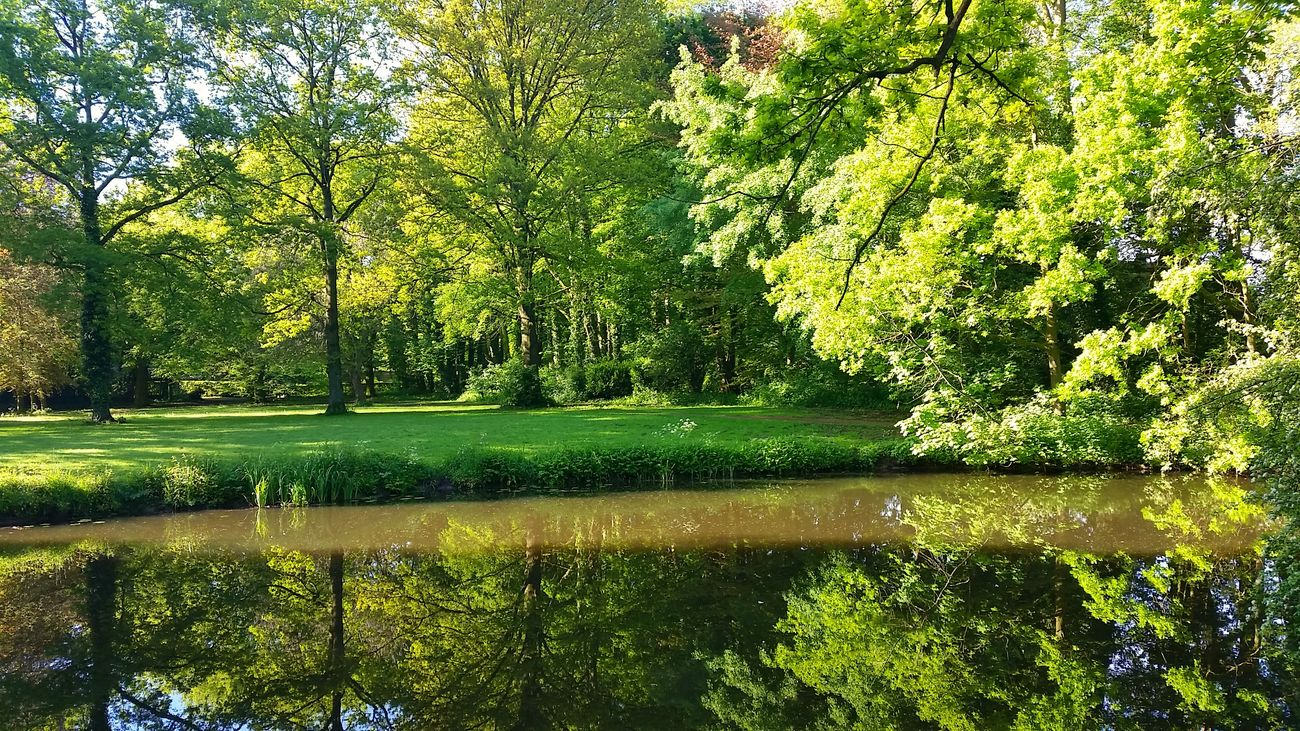 Reflection Nature Beauty In Nature Lake Water Green Color Scenics Growth Tree Outdoors Grass No People Nature_collection Landscape_photography Landscape_Collection Nature Photography Beauty In Nature Awesome_shots