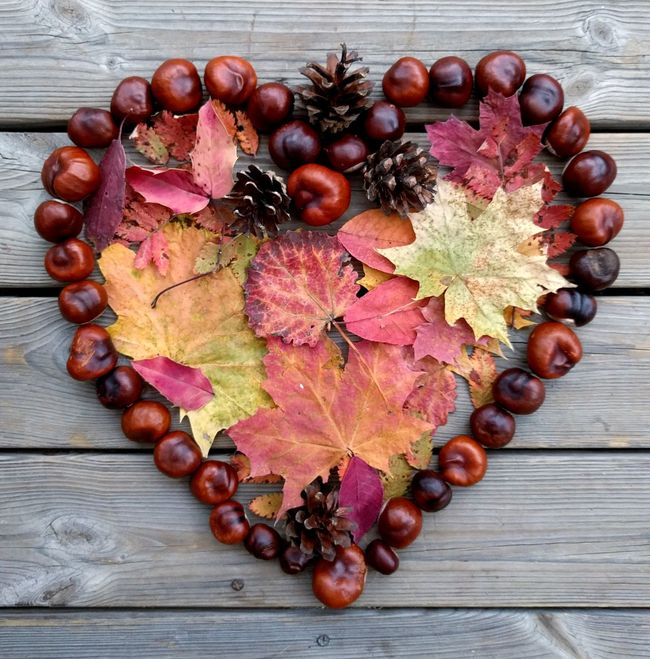 Lovely autumn 🍁💞 Still Life Large Group Of Objects Multi Colored Creativity Arrangement Red Brown Autumn Colours October Colorful Leaves Heartshape Heart Shaped  Craft Crafts Decorative Art Decoration