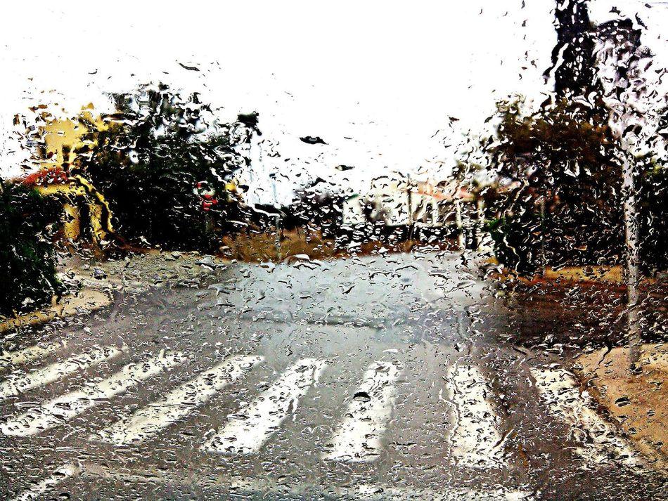 Hello World Taking Pictures Rain Rainy