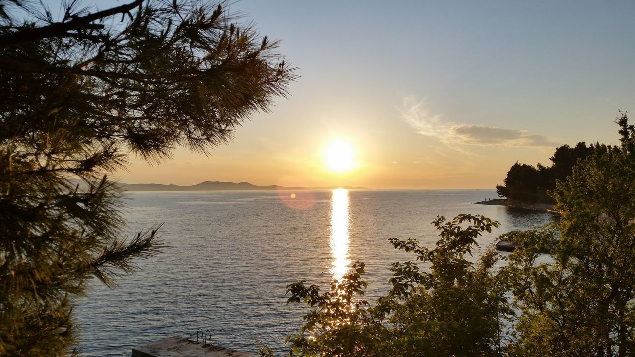 Sunset Sun Sea Water Tree Beach Nature Silhouette Sky Scenics Sunlight Beauty In Nature Horizon Over Water Summer Tropical Climate Tranquility Idyllic Vacations Palm Tree Tranquil Scene Croatia Zadar