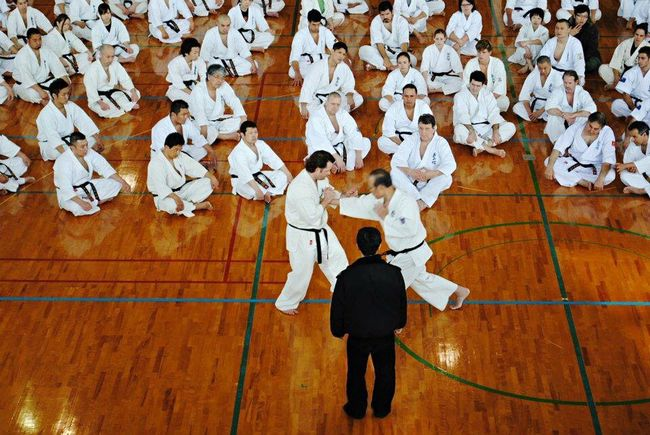 International blackbelt seminar Kyokushin Blackbelt Bird's Eye View International EyeEm Best Shots Eyeemphotography