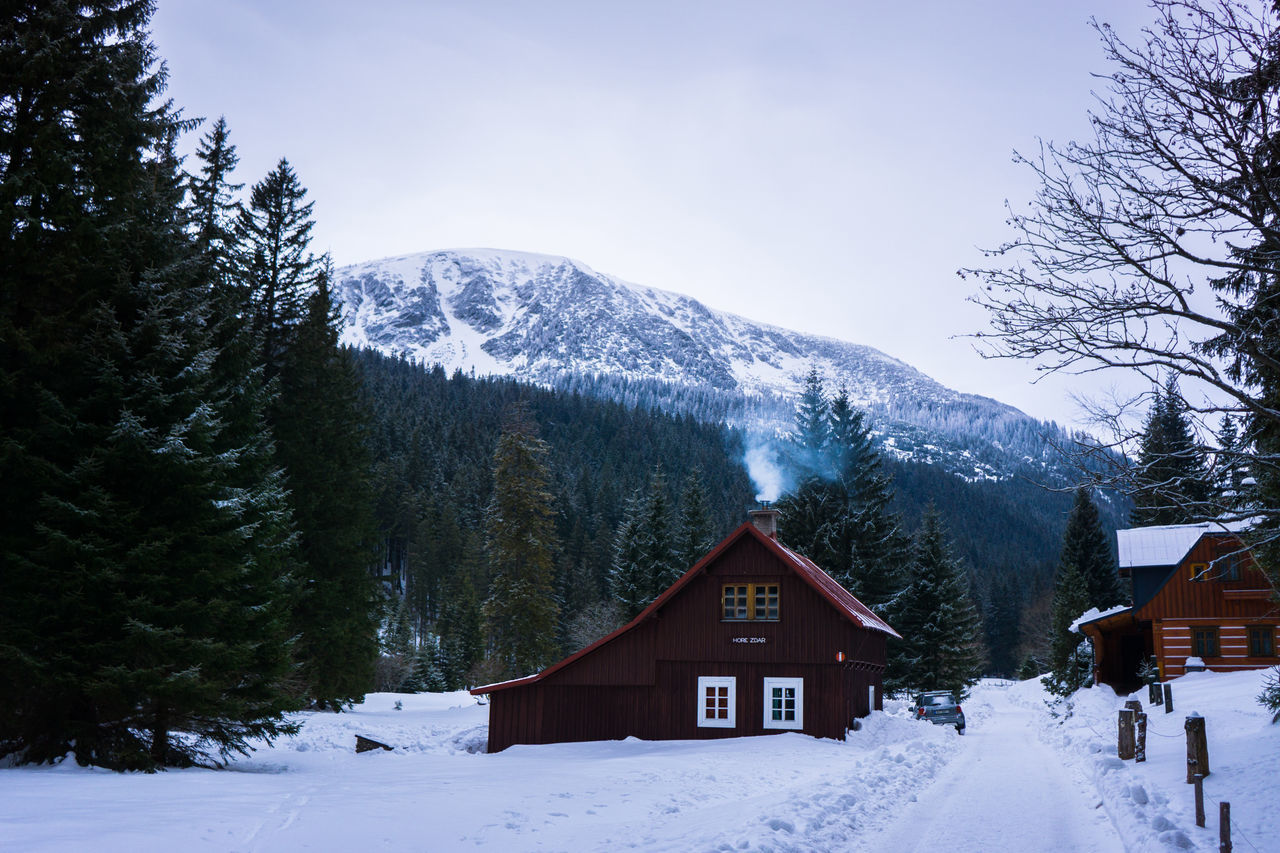 Architecture Beauty In Nature Chalet Cold Temperature Cottage Day Forest Landscape Log Cabin Mountain Mountain Peak Mountain Range Nature No People Outdoors Pinaceae Pine Tree Pine Woodland Scenics Sky Snow Snowcapped Mountain Snowing Tree Winter