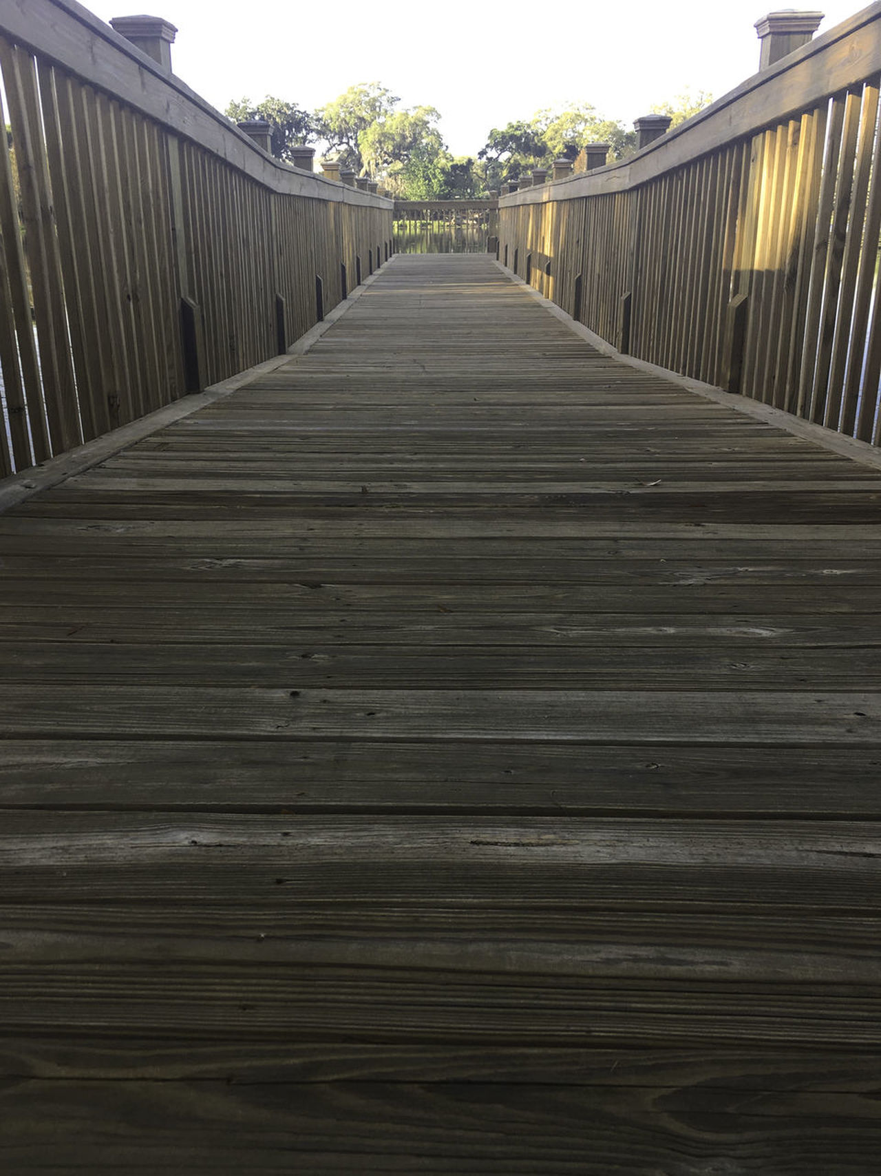 wooden path Architecture Bridge - Man Made Structure Built Structure Connection Day Footbridge Nature No People Outdoors Railing Sky The Way Forward Tree Wood - Material Wood Paneling