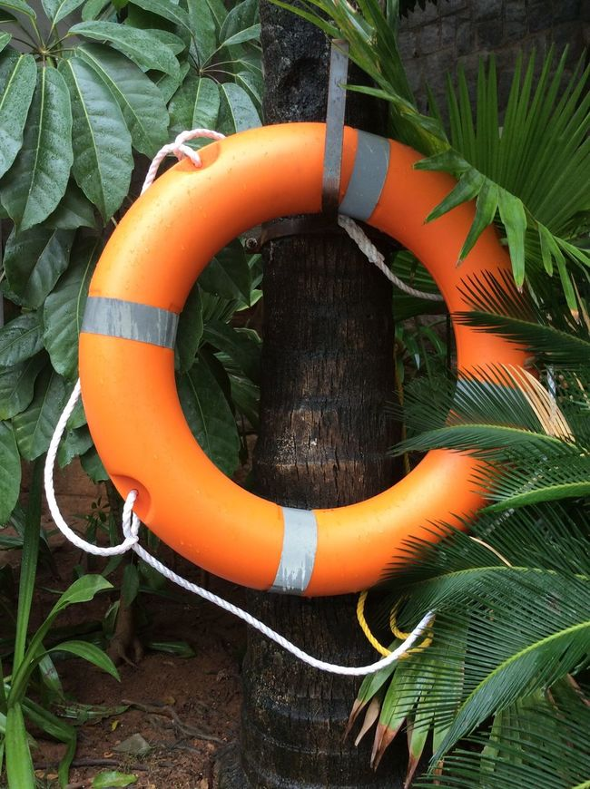 Hydrabad Orange Pool Lifejacket Amongst The Greenery attached to a palm tree India