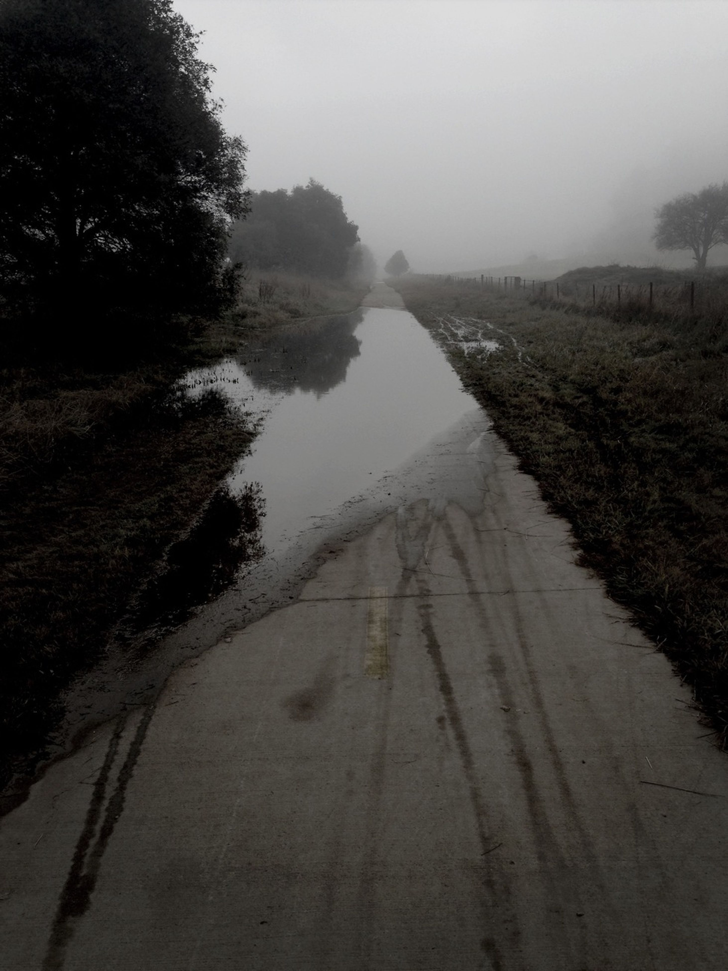 the way forward, transportation, diminishing perspective, vanishing point, road, tree, sky, fog, tranquility, weather, tranquil scene, nature, foggy, landscape, water, street, outdoors, no people, field, long