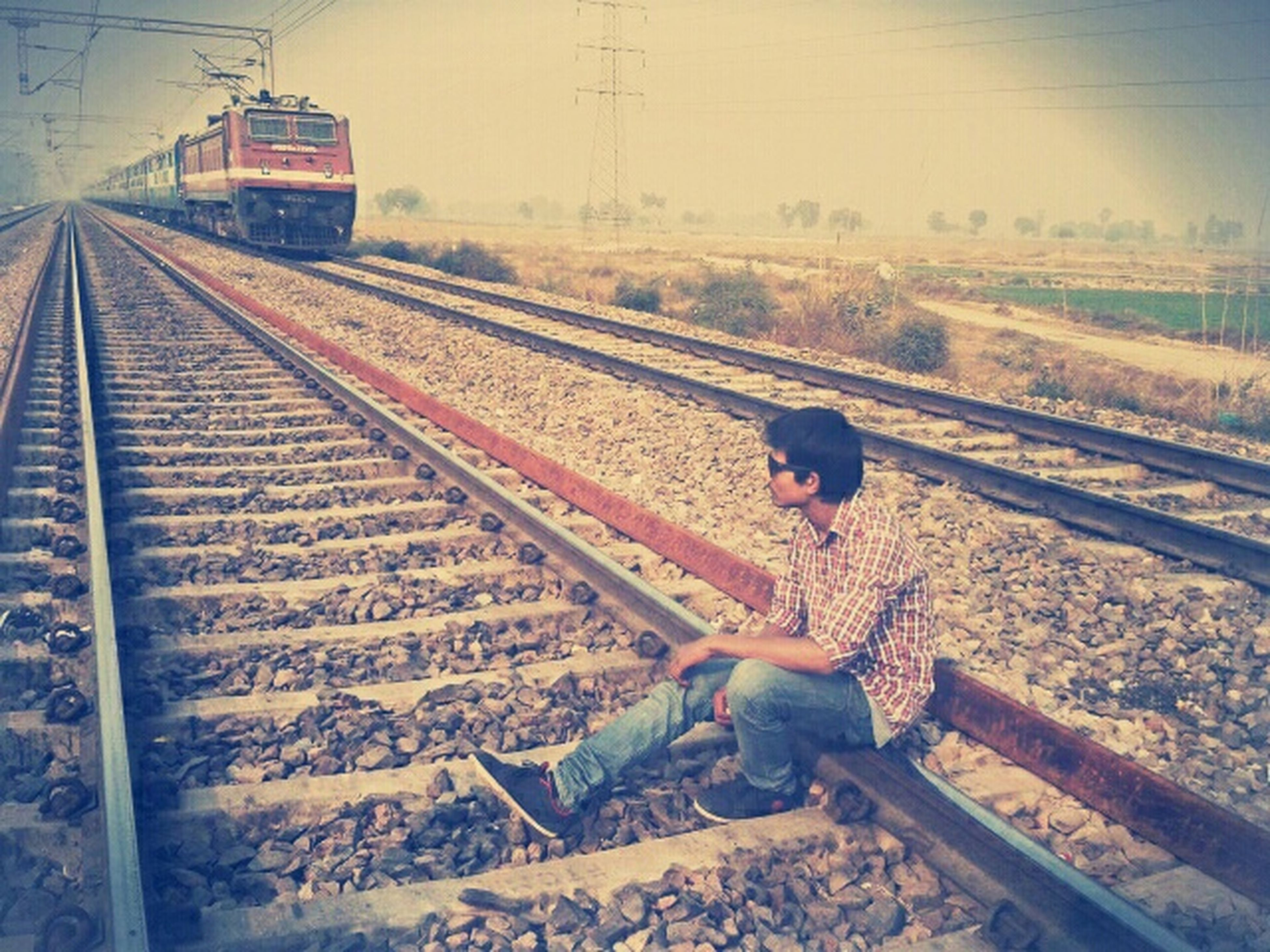 railroad track, rail transportation, transportation, public transportation, railway track, railroad station platform, railroad station, diminishing perspective, animal themes, sky, the way forward, train - vehicle, day, travel, high angle view, connection, one animal, outdoors, vanishing point, landscape