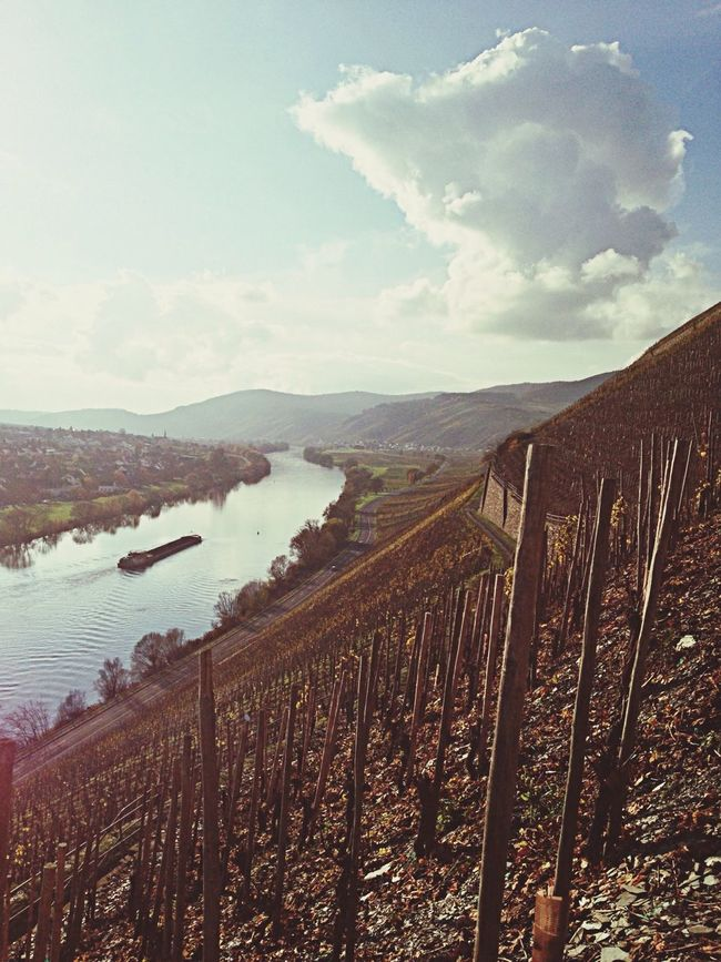 Mosel Vineyard Clouds And Sky Ship